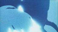 Война на Венере / The Venus Wars (Ясухико Ёсикадзу) [Movie] [01 из 1] [Без хардсаба] [RUS(int)] [1989 г., приключения, фантастика, DVD-Rip]
