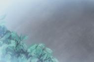 Девчонки в очках / Девушка в очках / Megane na Kanojo (Ито Кодзи) [OVA] [01-04 из 4] [Без хардсаба] [RUS(int), JAP. SUB] [2010 г., комедия, романтика, повседневность, DVD-Rip]